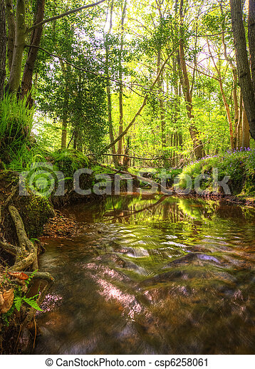 Beautiful image from very low point of view along stream flowing upstream with deep vibrant lush foliage on either bank and sunlight brightening up background - csp6258061