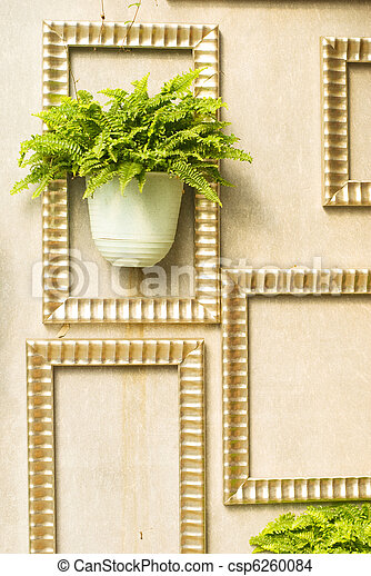 Green plant in wooden frame