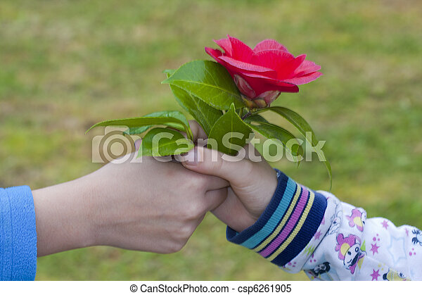 images de amour donner symbole mains fleurs amiti enfants csp6261905 recherchez. Black Bedroom Furniture Sets. Home Design Ideas