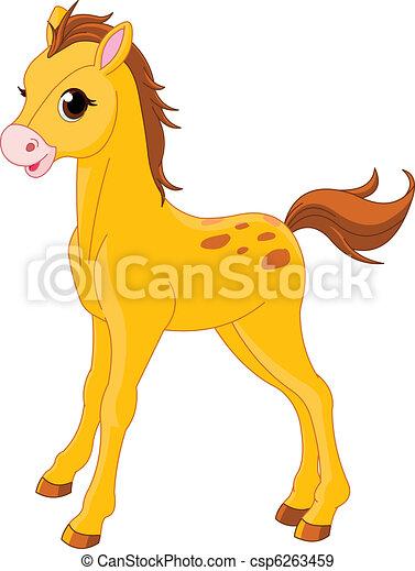 Cute Horse foal - csp6263459