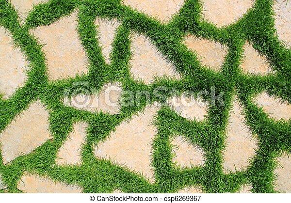 Stock de fotos piedra trayectoria verde pasto o c sped for Patios con cesped y piedras