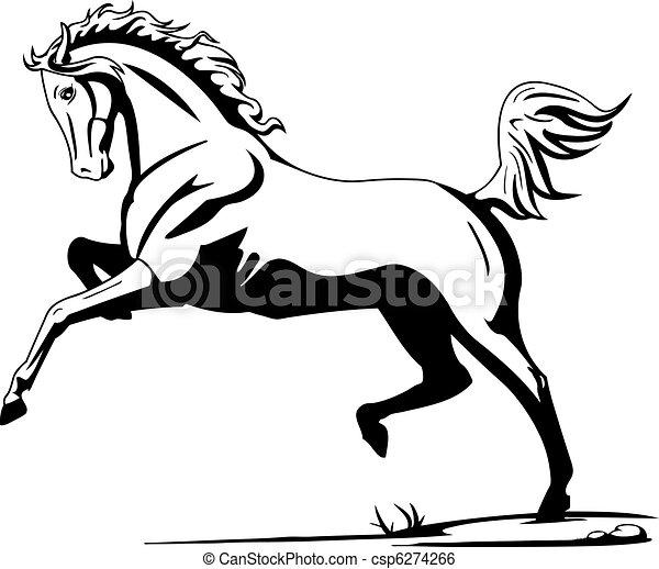 horse - csp6274266