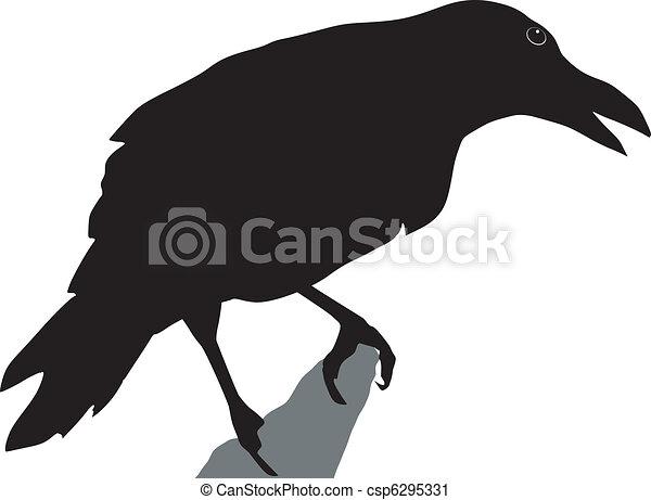 crow - csp6295331