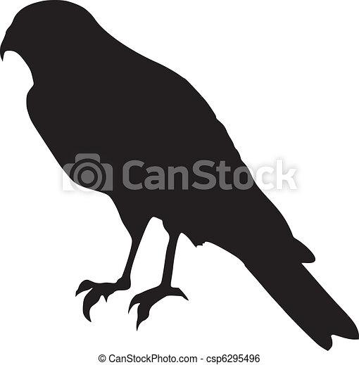 falcon - csp6295496