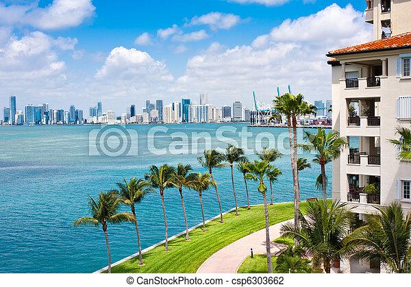 Miami Tropical Paradise - csp6303662