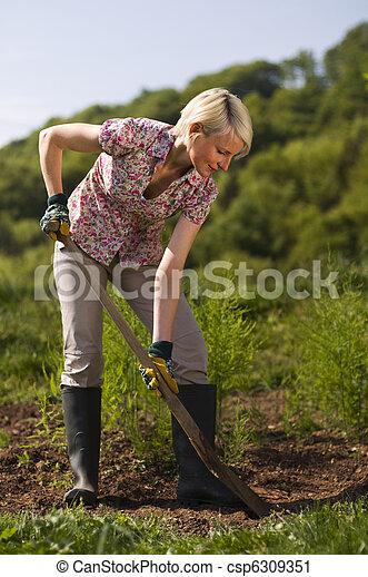 Gardening - csp6309351