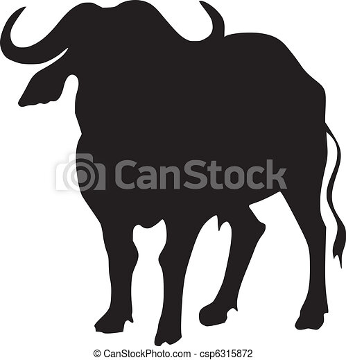 silhouette of African buffalo - csp6315872