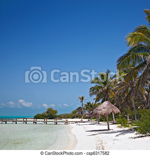 beach on the Isla Contoy, Mexico - csp6317582