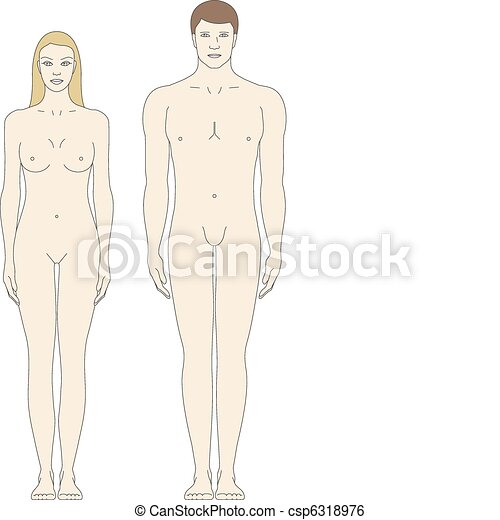 male and female body templates - csp6318976