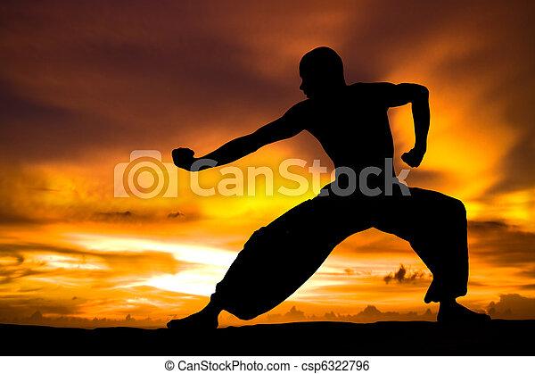 Martial Arts - csp6322796