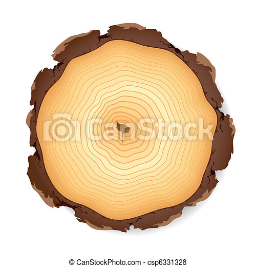 Wooden cross section  - csp6331328