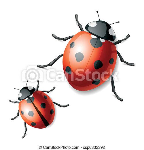 Ladybird - csp6332392