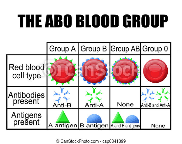 The ABO blood group diagram - csp6341399