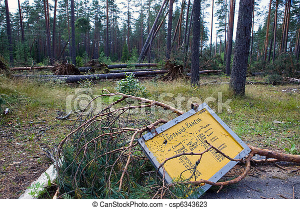 "Consequences of hurricane ""Asta"", Russia. The broken sign on a bus stop against the broken trees - csp6343623"