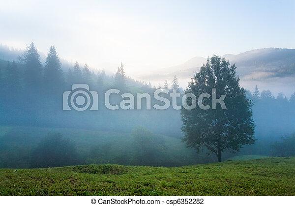 Hazy daybreak in mountain valley - csp6352282