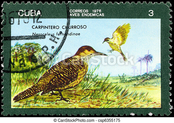 CUBA - CIRCA 1976 Flicker - csp6355175