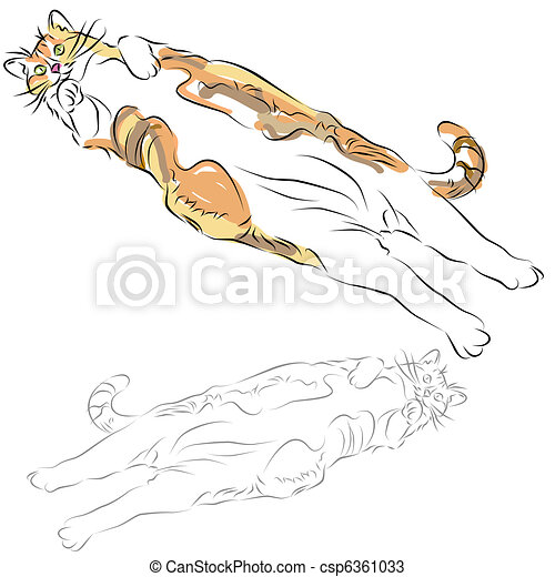 Fat Calico Cat Laying Down - csp6361033