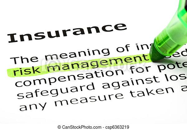 'Risk management' highlighted, under 'Insurance' - csp6363219