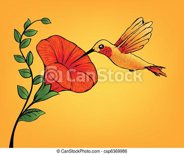 flor, colibrí - csp6369986