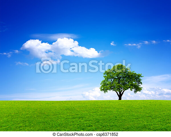 綠色, 風景, 自然 - csp6371852