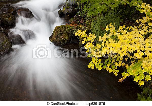 Autumn Waterfall, nature stock photography - csp6391876