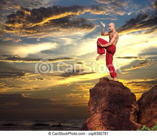 Martial Artist - csp6392781