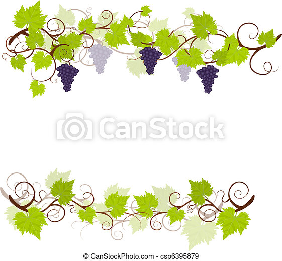 Garden grape vines frame. - csp6395879