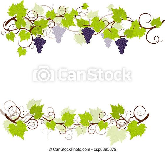 Garden grape vines frame. - csp6395879