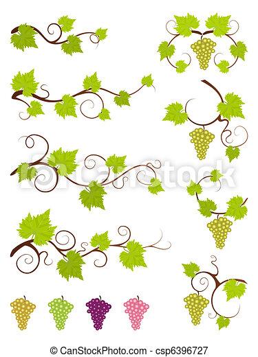 Grape vines design elements set. - csp6396727
