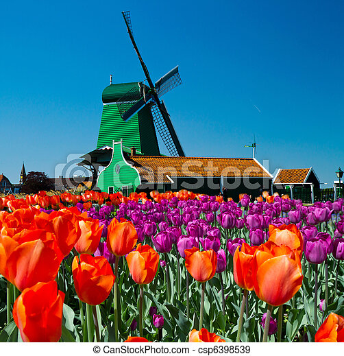 windmill in holland - csp6398539