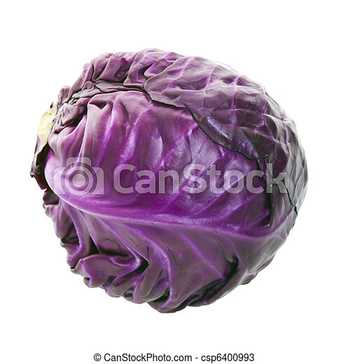 Purple Cabbage Head - csp6400993