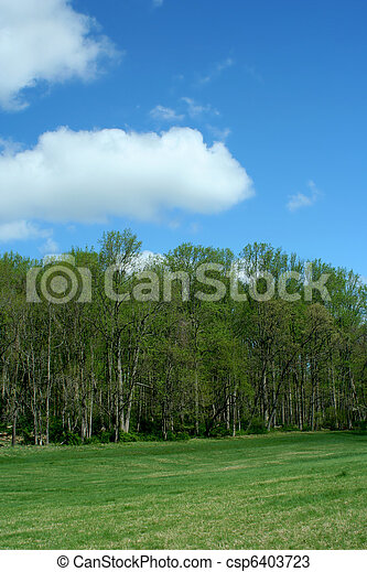 Spring trees with blue sky - csp6403723