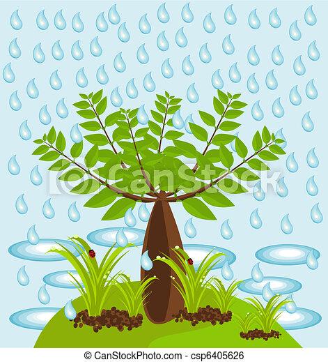 Baobab tree in jungle - csp6405626