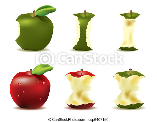 Mouthwatering fresh apple vector - csp6407150