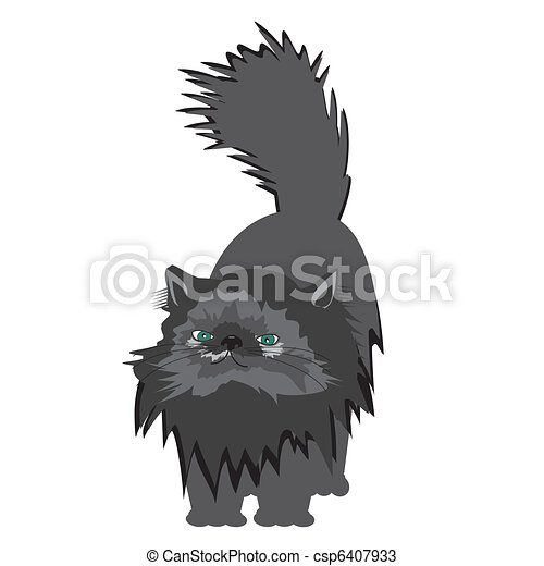 persian cat on white background - csp6407933
