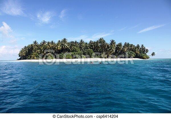 Snorkeling in Maldives - csp6414204