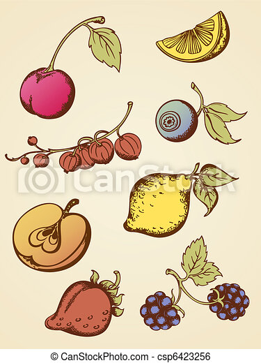 vintage fruits - csp6423256
