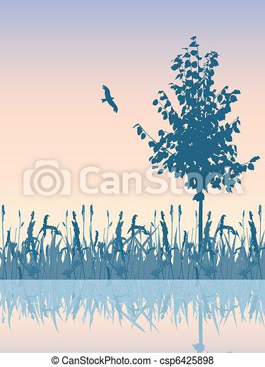 Beautiful sunset meadow waterside.  - csp6425898