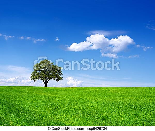 Eco Land - csp6426734