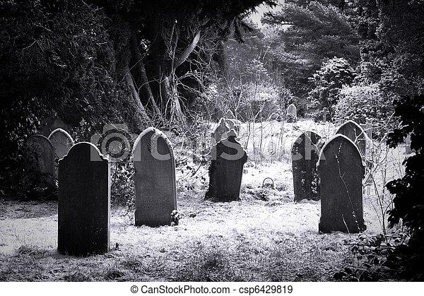 Cemetery & snow - csp6429819