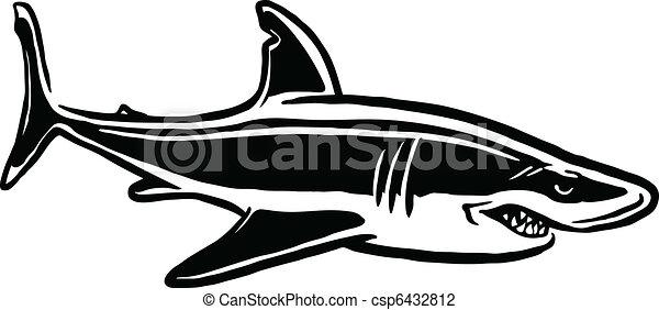 shark attack - csp6432812