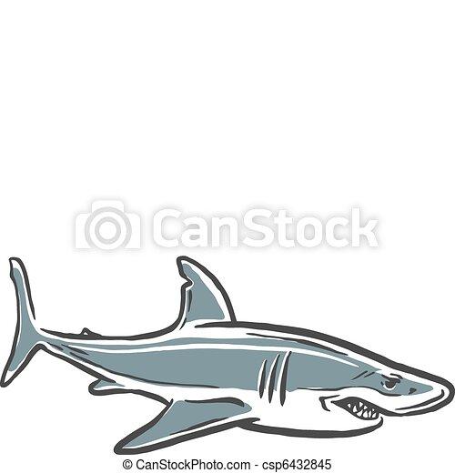 shark attack - csp6432845