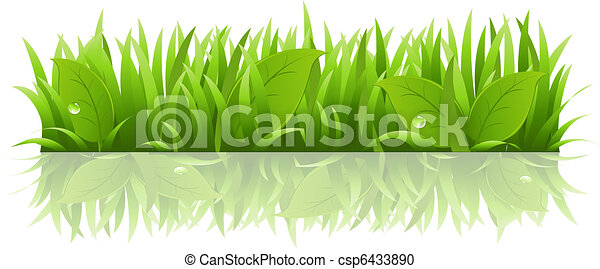 Grass And Leafs - csp6433890