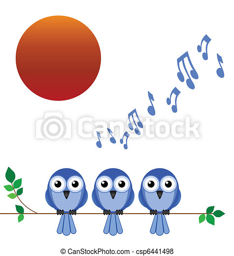 dawn chorus - csp6441498
