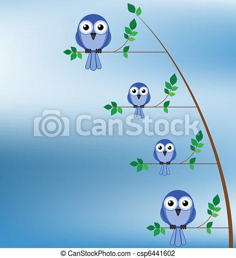 Family of birds  - csp6441602