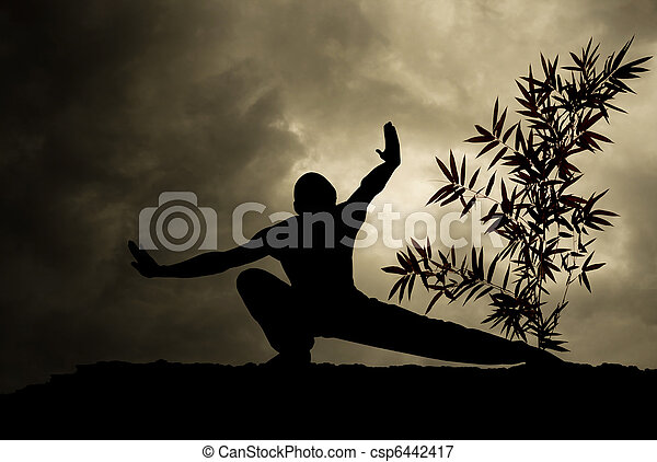 Kung Fu Martial Art Background - csp6442417