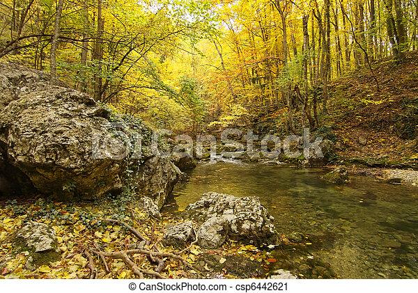 paysage, montagne, rivière, automne, forêt - csp6442621