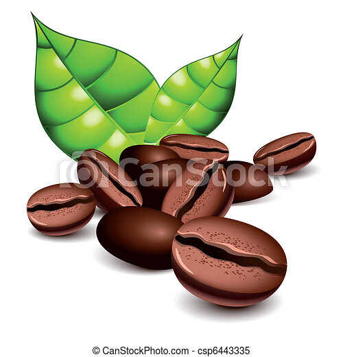 Coffee beans and leaves - csp6443335