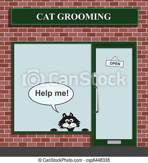 cat grooming establishment - csp6448338