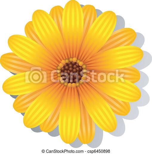 Gerbera Daisy Line Drawing Beautiful yellow Gerber Daisy